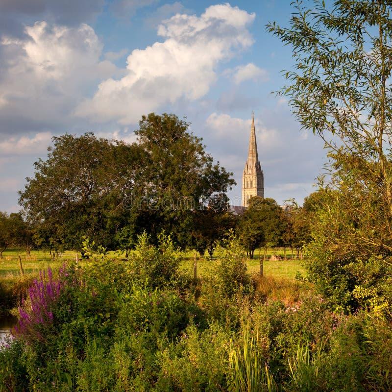 Catedral de Salisbúria, Wiltshire, Reino Unido fotos de stock royalty free