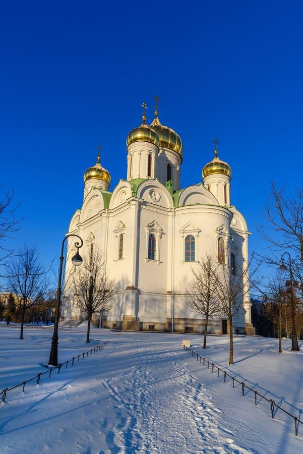 Catedral de St Catherine velikomuchennitsy en invierno pushkin St Petersburg Rusia imagen de archivo libre de regalías