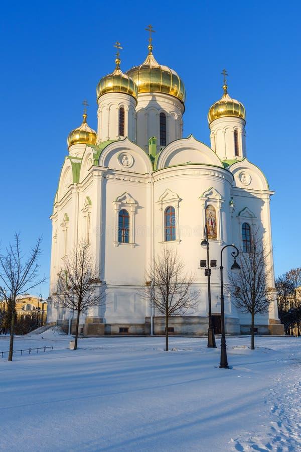 Catedral de St Catherine velikomuchennitsy en invierno pushkin St Petersburg Rusia fotos de archivo libres de regalías