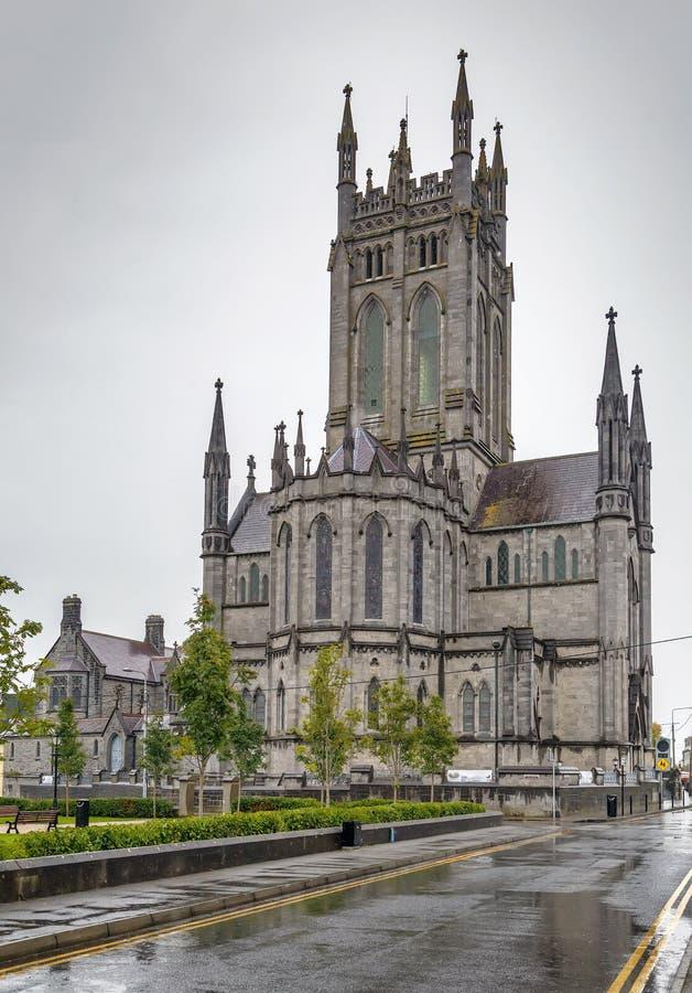 A catedral de St Mary, Kilkenny, Irlanda foto de stock royalty free