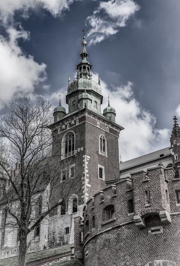 Catedral de St Stanislaw e de St Vaclav, fragmento Castelo famoso de Wawel em Krakow, Polônia foto de stock