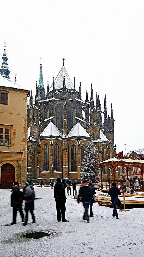Catedral de Vitus del santo en el castillo de Praga en invierno foto de archivo