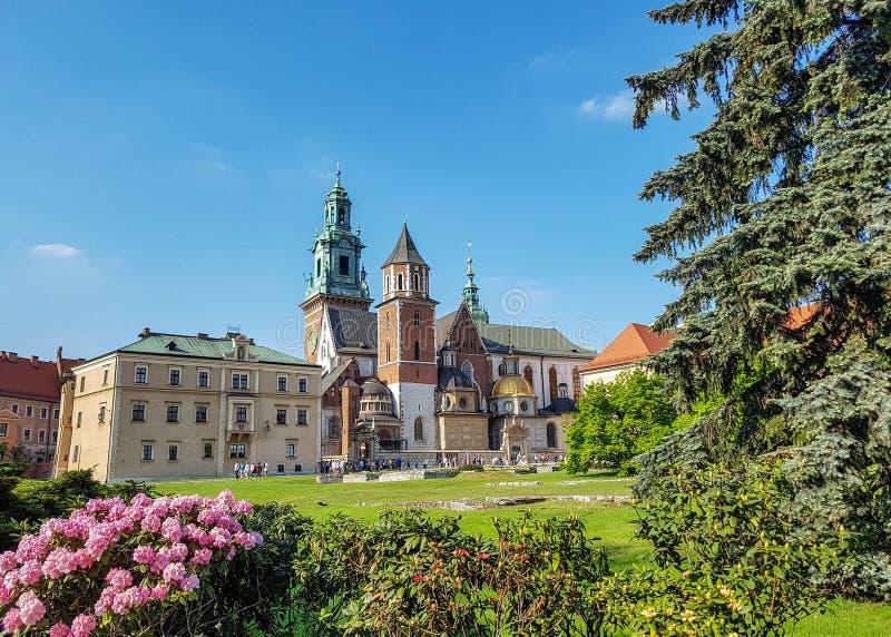 Catedral de Wawel: mistura de estilos da arquitetura em uma igreja com flores cor-de-rosa em uma linha da frente e o céu ensolara imagem de stock royalty free