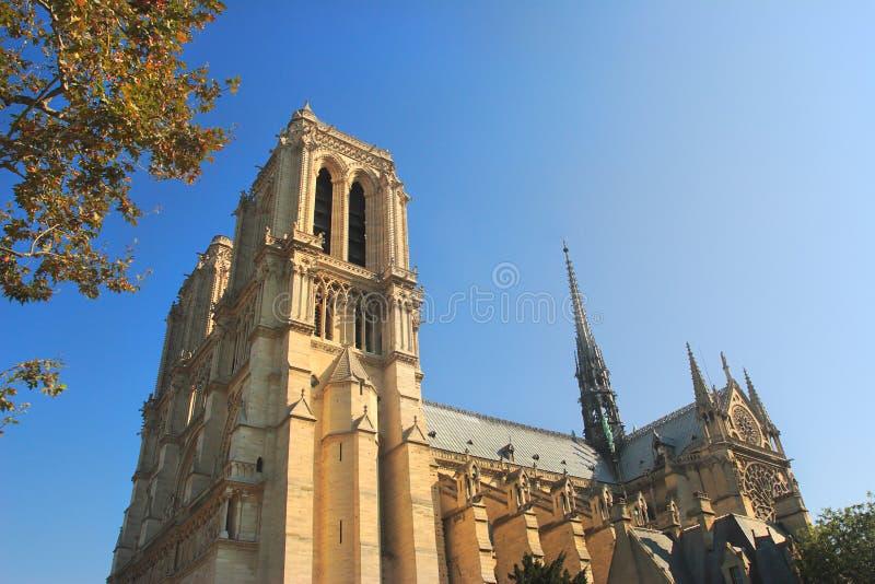Catedral del de París de la presa de Notre. imagen de archivo