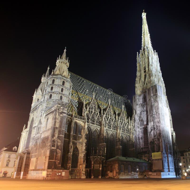 Catedral del St. Stephan en Viena en la noche fotografía de archivo