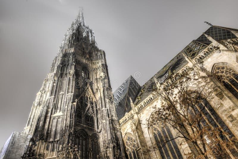 Catedral del St Stephan en Viena en la noche, Austria fotografía de archivo libre de regalías