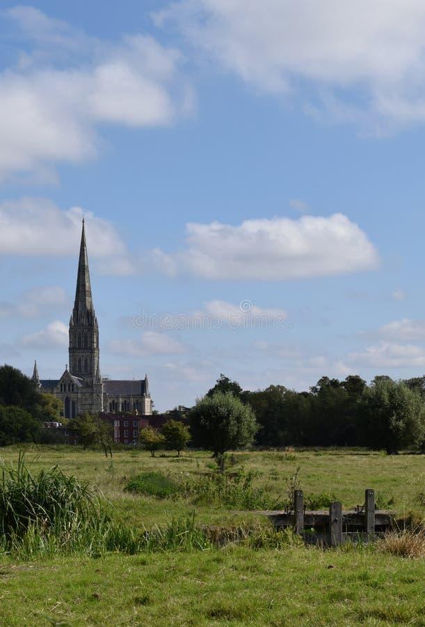 Catedral dos prados da água, Wiltshire de Salisbúria, Inglaterra imagem de stock royalty free