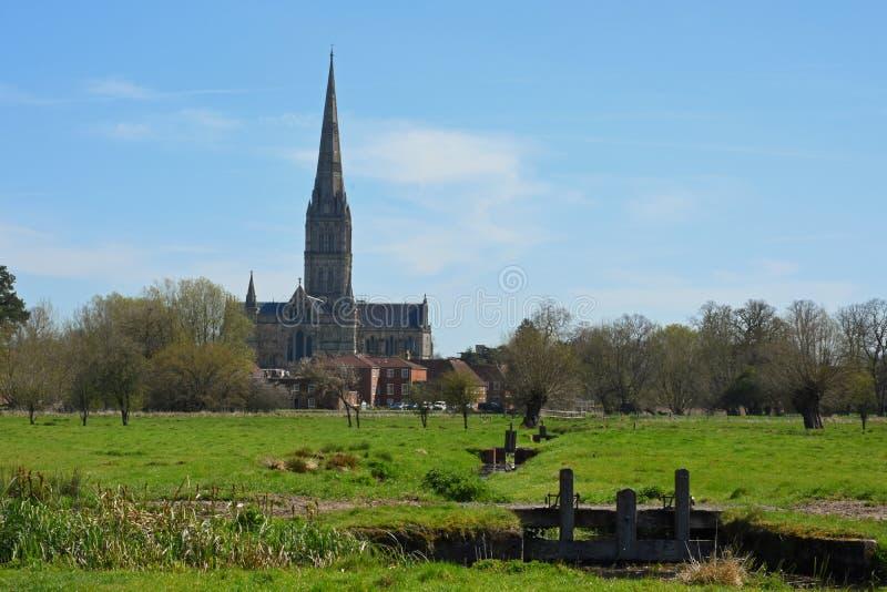 Catedral dos prados da água, Wiltshire de Salisbúria, Inglaterra fotografia de stock