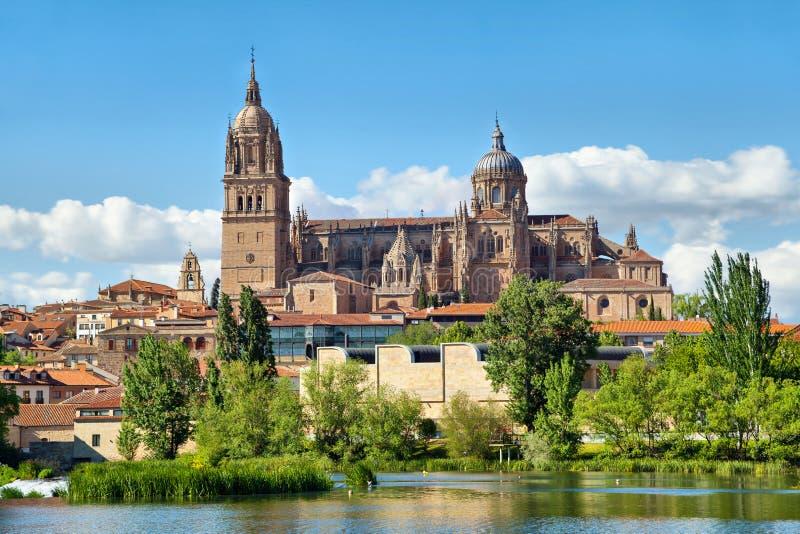 Catedral nova em Salamanca - vista do lado do rio imagem de stock royalty free