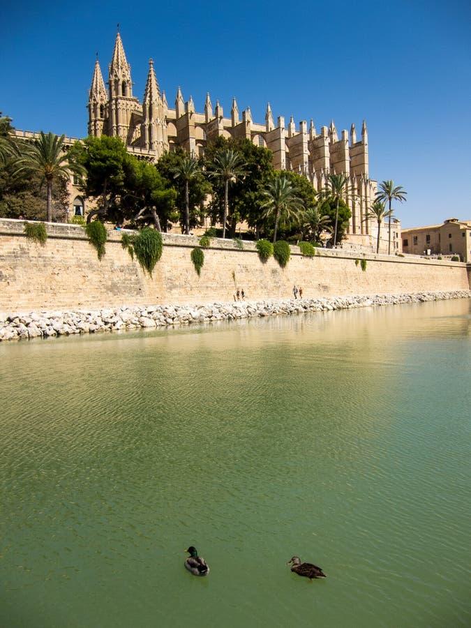 Catedral Palma de Mallorca fotos de stock