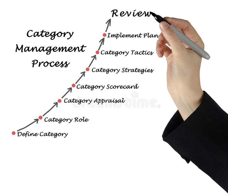 Category Management. From definition to review royalty free stock photo
