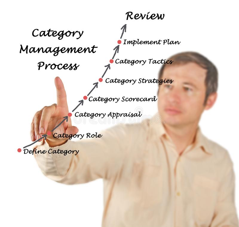 Category Management. Man presenting Category Management process royalty free stock image