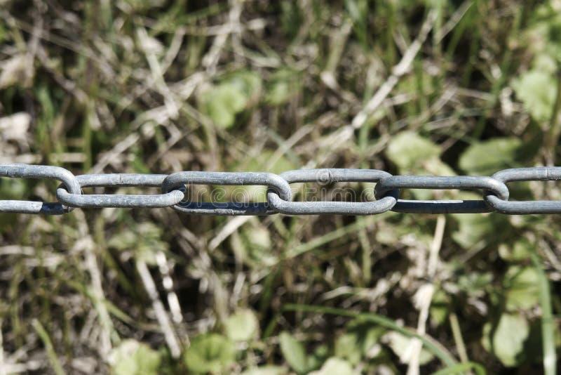 Catena con il fondo confuso dell'erba la catena è un'assemblea di serie o fotografie stock