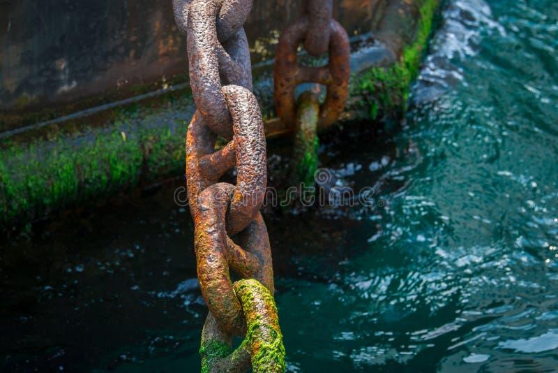 Catena d'ancoraggio arrugginita e muscosa della nave sulla costa asciutta nel porto fotografie stock