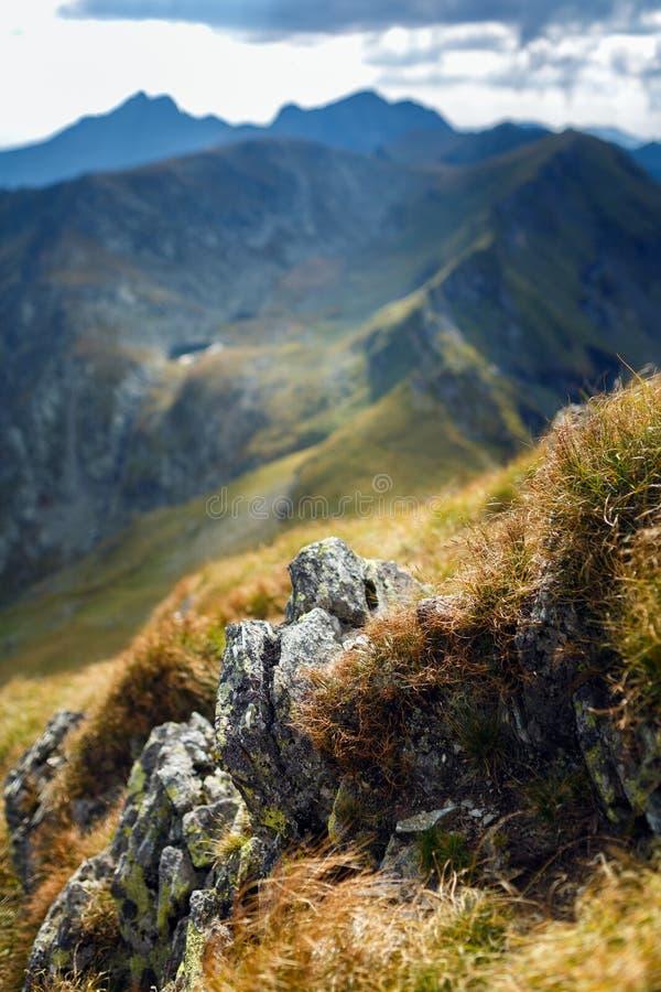 Catena montuosa con il fuoco selettivo fotografia stock