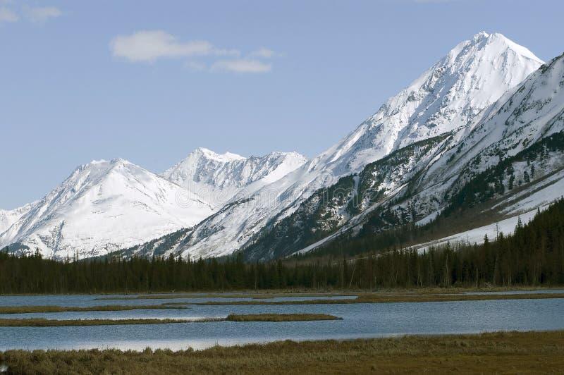 Catena montuosa d'Alasca fotografia stock libera da diritti
