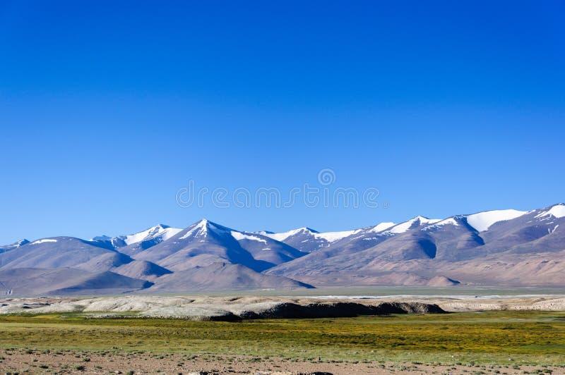 Catena montuosa della neve nel plateau di Changthang, Ladakh, il Jammu e Kashmir, India immagine stock libera da diritti
