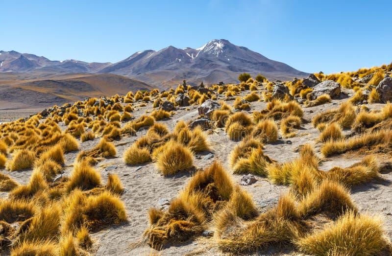 Catena montuosa delle Ande in Bolivia, Sudamerica fotografie stock