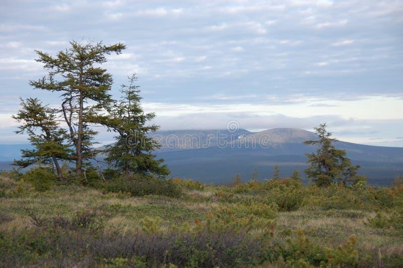 Catena montuosa di regione di Kolyma fotografia stock libera da diritti