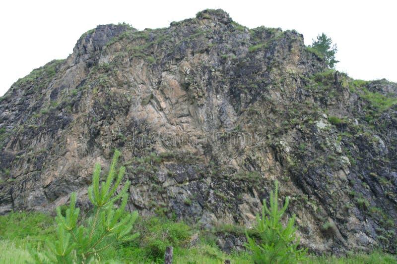 Catena montuosa secolare, roccia coperta di pianta fotografie stock