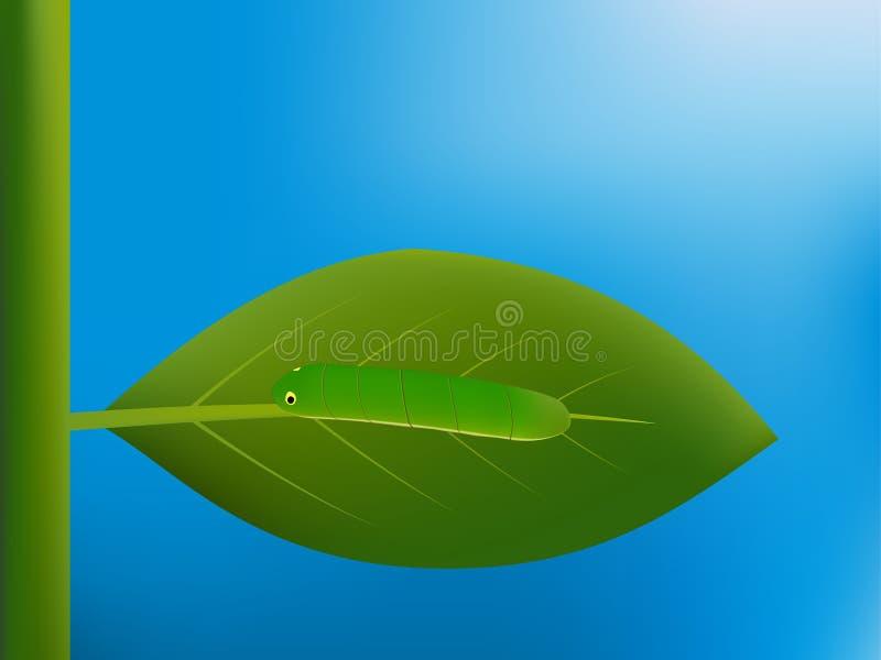 Caterpillar que anda na folha ilustração stock