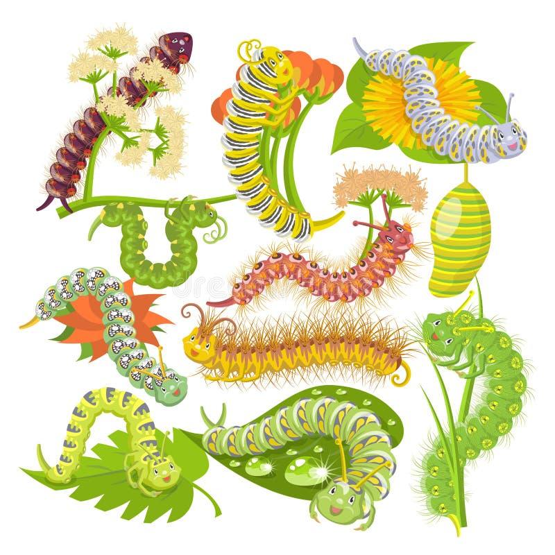 Caterpillar vector o leafworm ou sem-fins verdes do larva e os frondosos no grupo da ilustração da natureza de spanworm e de caso ilustração royalty free
