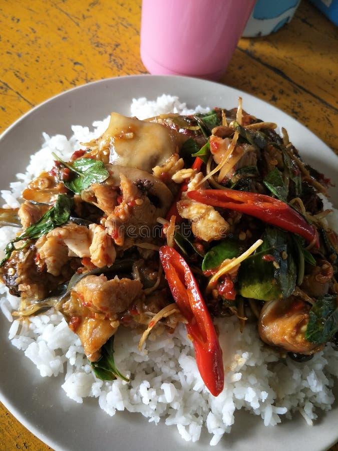 Catfish amphawa. Thaifood spicy hungry stock photography