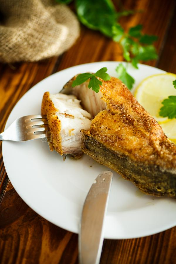 Catfish roasted in batter stock photo