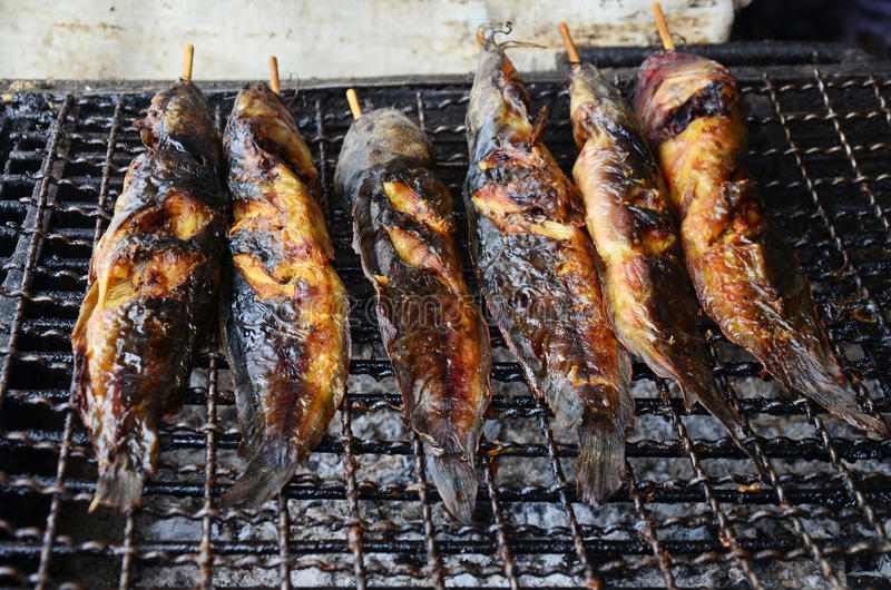 Catfishes fried thai style for sale. Clarias is a genus of catfishes (order Siluriformes) of the family Clariidae, the airbreathing catfishes. The name is stock photography