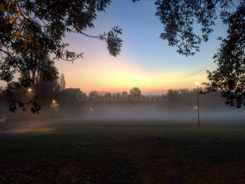 Catford park obrazy royalty free