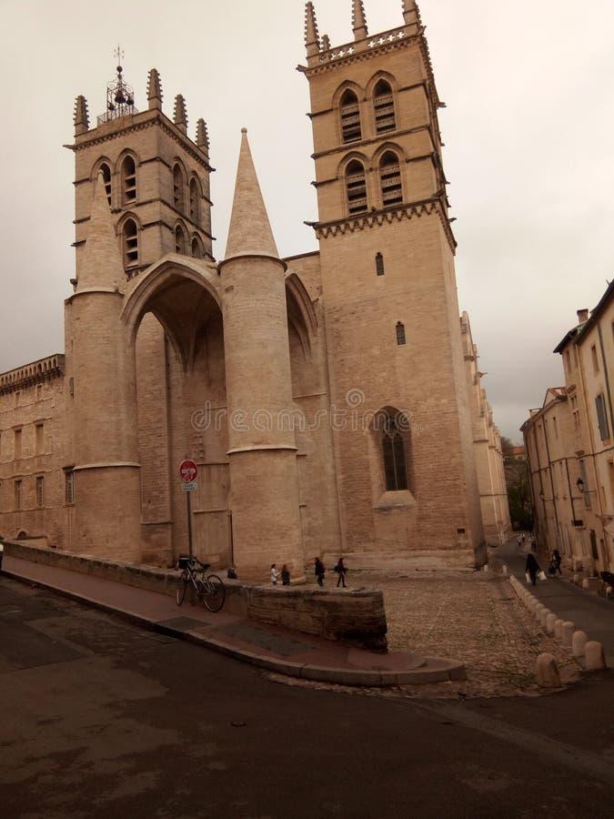 Cathédrale arkivbilder