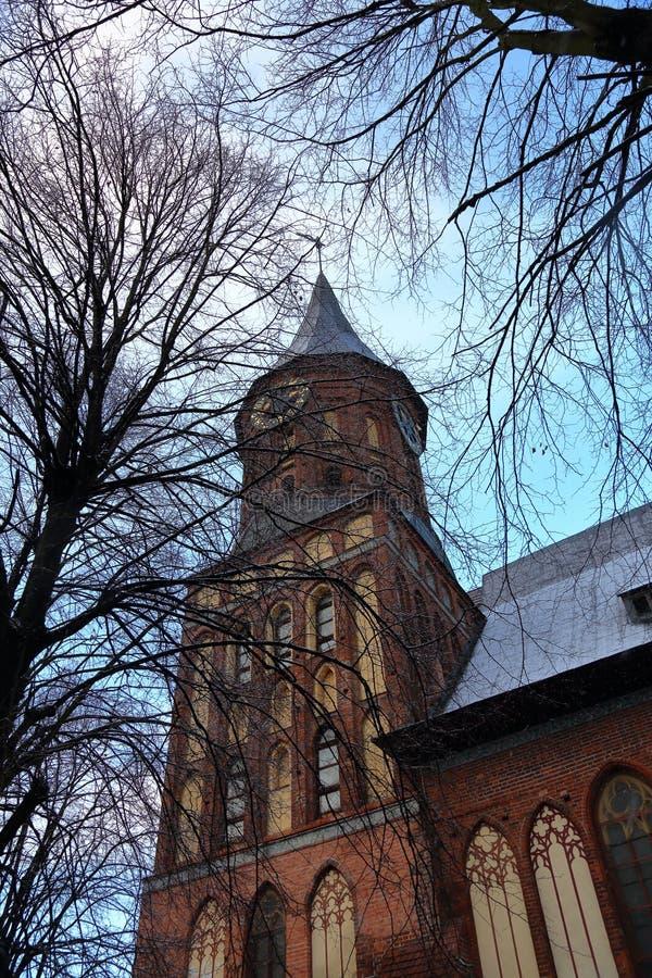 Cathédrale à Kaliningrad, Russie photographie stock libre de droits