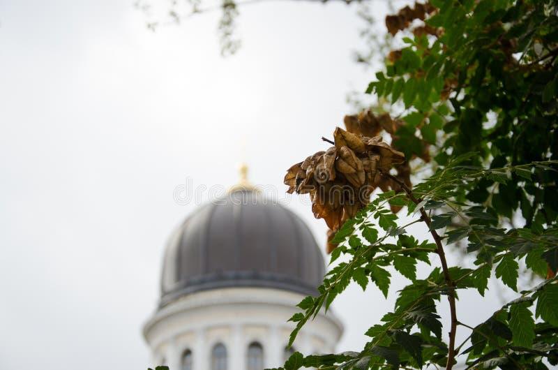 Cathédrale à Odessa photo stock