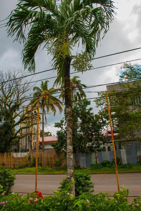 Cathédrale catholique sur le fond des palmiers aux Philippines Pandan, Panay photos libres de droits