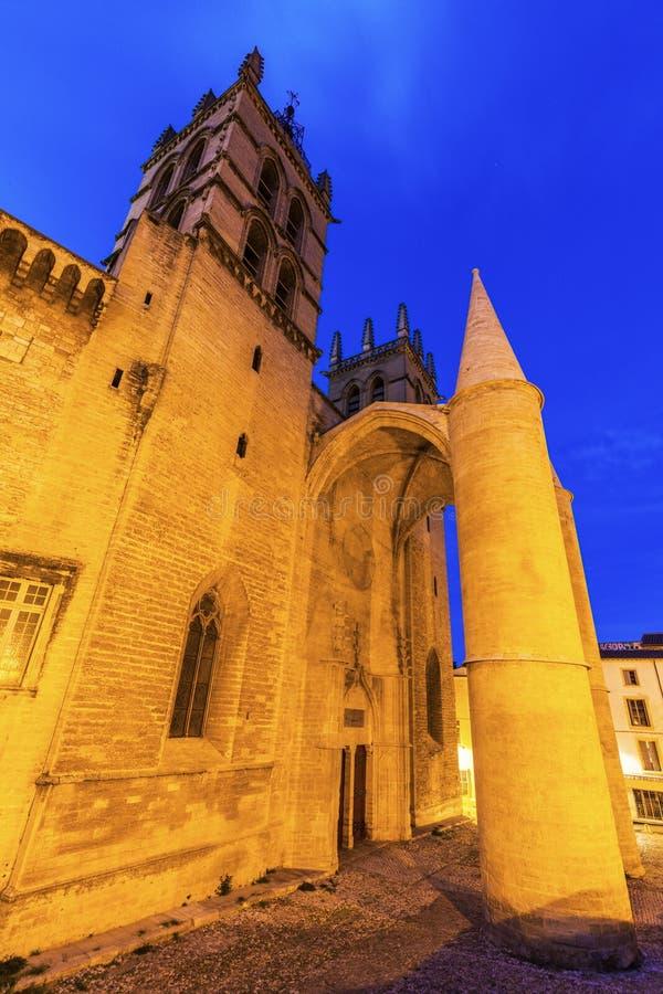 Cathédrale de Montpellier photos libres de droits