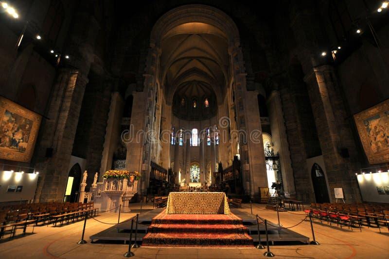 Cathédrale de St John le divin images libres de droits