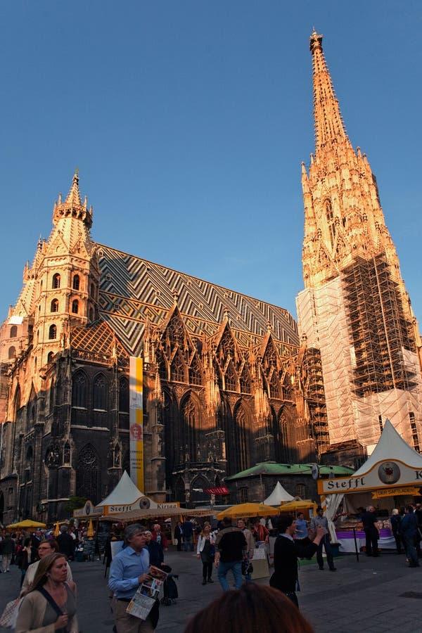 Cathédrale de St Stephan à Vienne photos stock