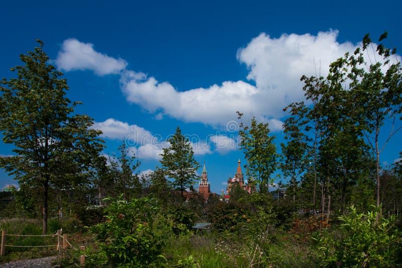 Cathédrale du ` s de Basil de saint, tour de Spasskaya dans une forêt sous un bleu photos stock
