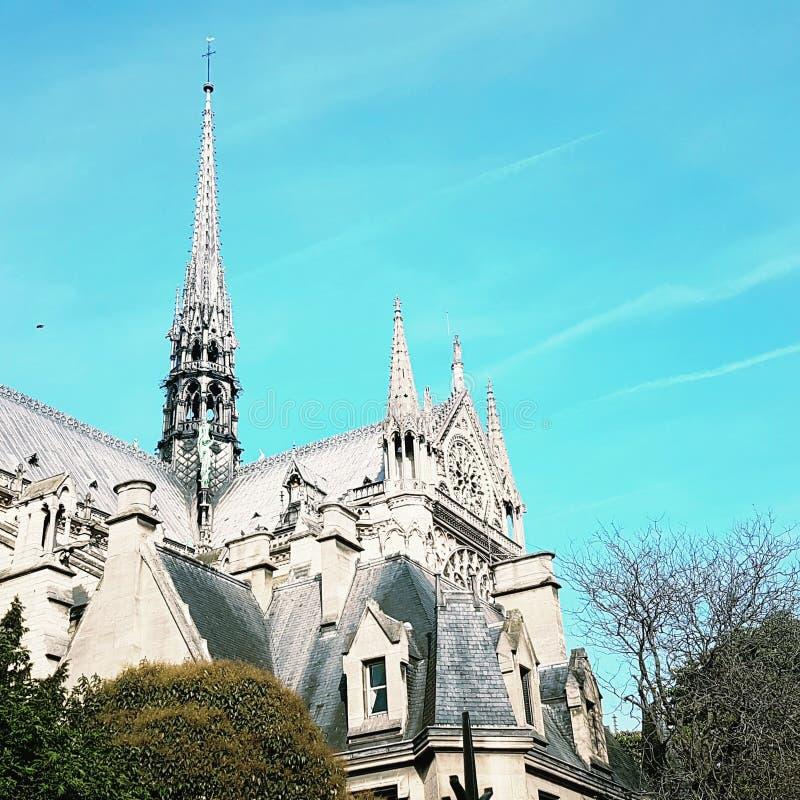 Cathédrale Notre-Dame. Cathedral notre-dame paris stock images