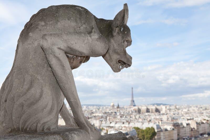 Cathédrale Notre Dame de statue de gargouille image stock