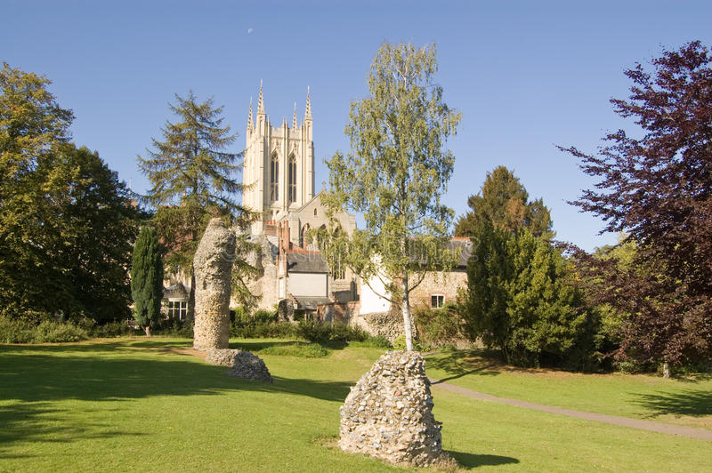 Download Cathedral, Bury St Edmunds stock photo. Image of gardens - 21490002