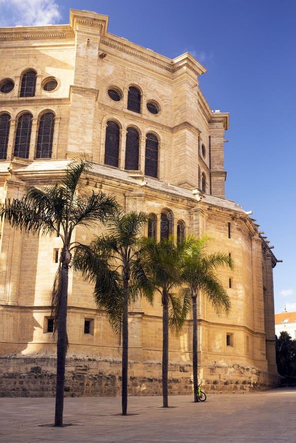 Cathedral Catedral de la Encarnacon, palmiers et place dans les rayons du coucher de soleil image stock