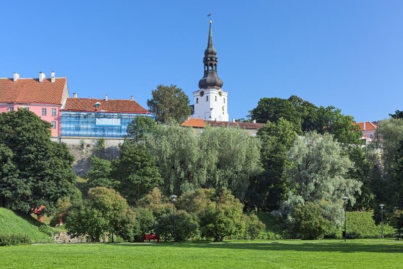 Cathedral Hill met de Dome Church in Tallinn, Estland stock fotografie