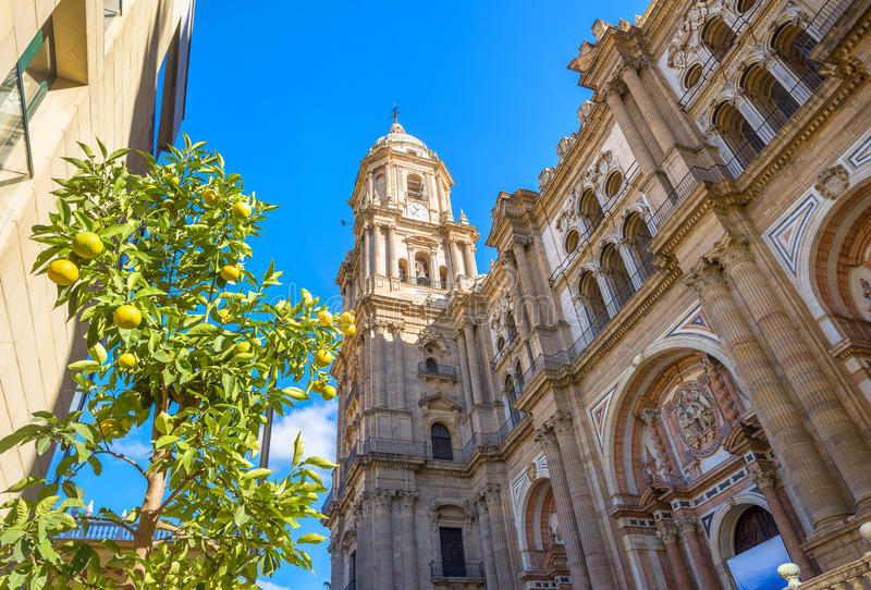 Cathedral of Malaga. Andalusia, Spain stock photos
