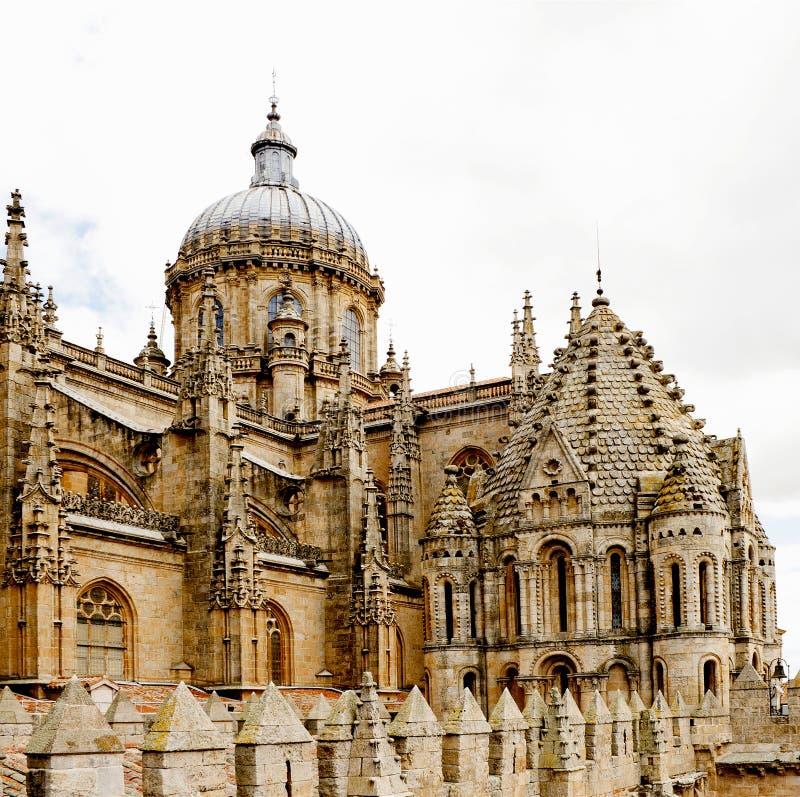 Free Cathedral Of Salamanca Royalty Free Stock Photo - 24721705