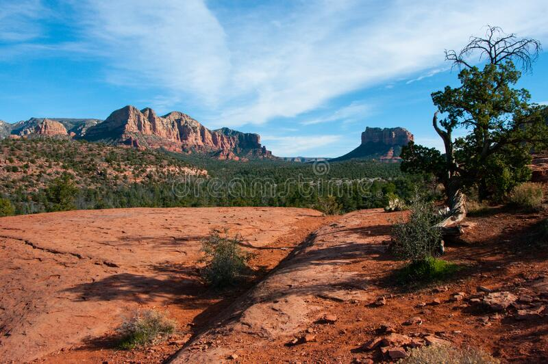 Cathedral Rock Trail No. 170 stock image