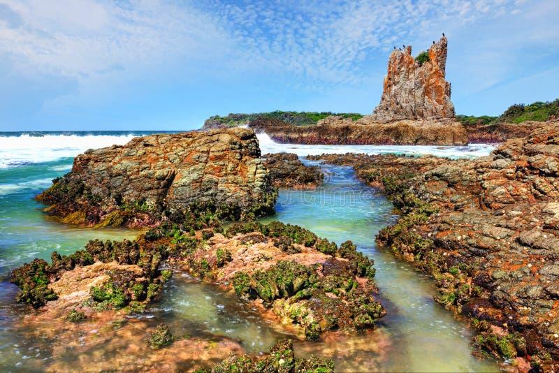 Cathedral Rocks Kiama Downs Australia. Birds roosting on Cathedral Rocks at Kiama Downs NSW Australia stock photo