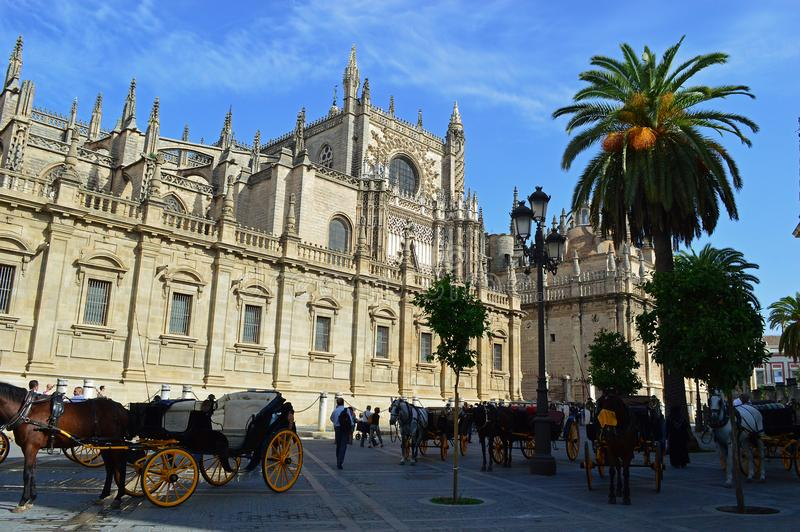 Cathedral Seville Cathedral and horse drawn carriages waiting in the shade royalty free stock images