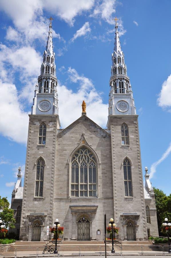 Cathedrale Notre Dame Ottawa fotografia stock libera da diritti
