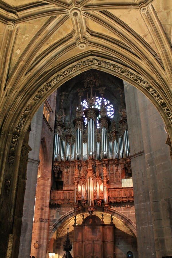 Cathedrale Notre-Dame, Rodez (Frankrike) royaltyfria foton